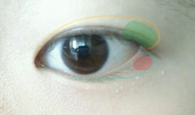 먼저 녹색부분을 포인트 컬러로 두세번 두드린 후 노란색 선 만큼 펴발라주세요! 그리구 빨간부분을 애교컬러로 한번만 두드리신 후 파란색 선만큼 펴발라 주시면 됩니당 #토니모리 딜라이트 써클렌즈 메이커 3호