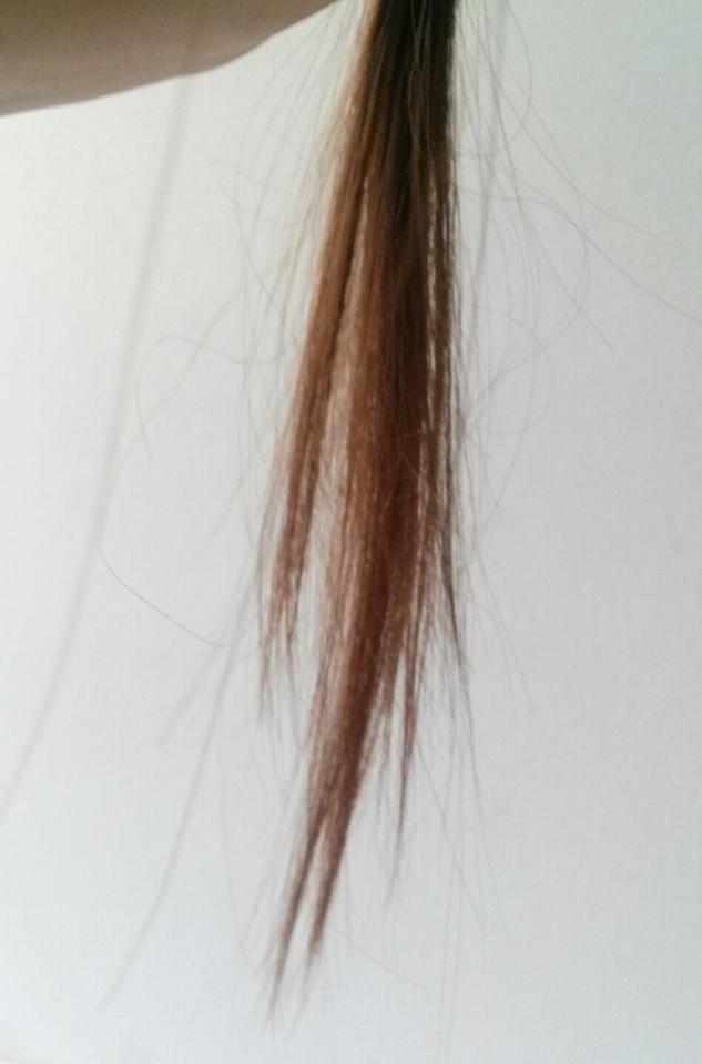제 원래 머리입니다! 태어나서(?) 한번도 염색 한번 해본적 없는 문명찐따입니다.. 전 신기하게도 윗머리는 고동색인데 밑에머리가 갈색이에요ㅋㅋㅋㅋ